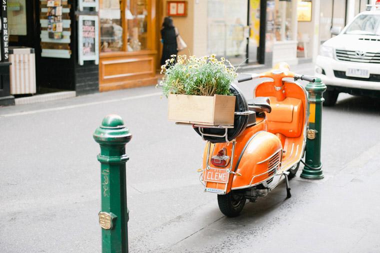 Melbourne_Spring Day_Inlight Photos_Joshua007